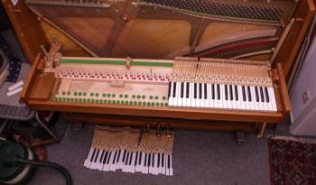 Klavierreinigung